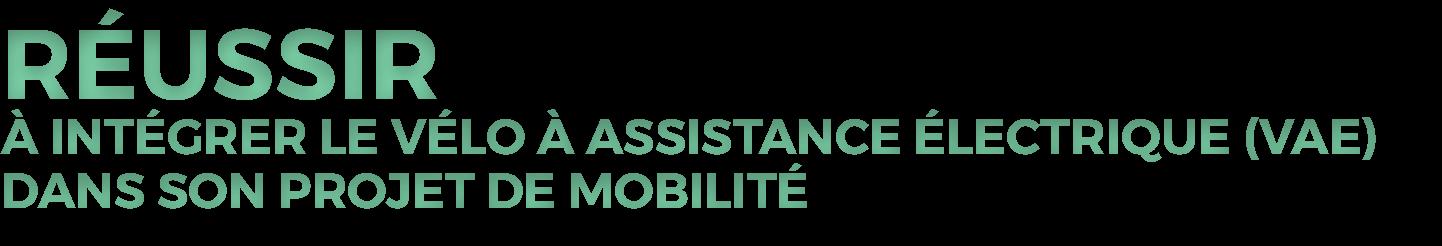 Nous Aidons Au Deploiement De Services De Location De Velos Electriques Pour Une Meilleure Mobilite
